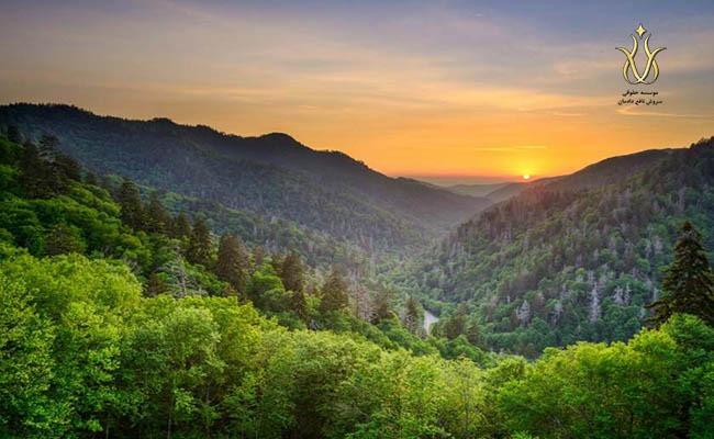 پارک ملی کوه های بزرگ اسموکی امریکا، انواع ویزای مهاجرتی آمریکا